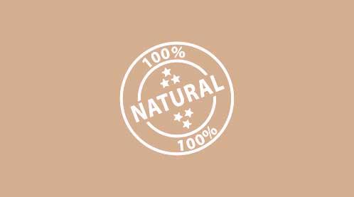 certifikat-skineco-031.jpg